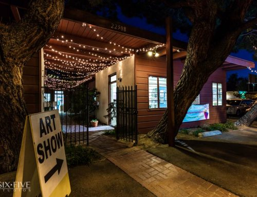 Santa Clarita Artists Association